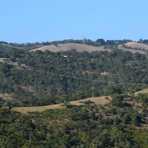 Ausblick Cleland Conservation Park
