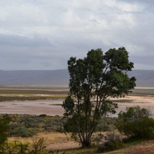 Aussicht zum Berg Yarrah