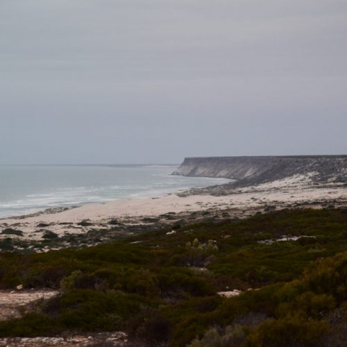 Great Australien Bight 2