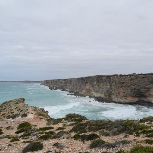 Head of Bight 2