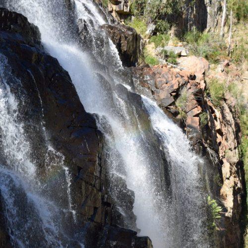 McKenzie Falls 1