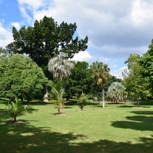 Botanic Garden 2