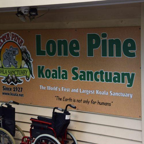 Lone Pine Koala Sanctuary Eingang